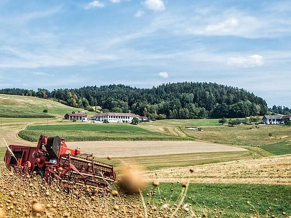 Stöcher | Landwirtschaft